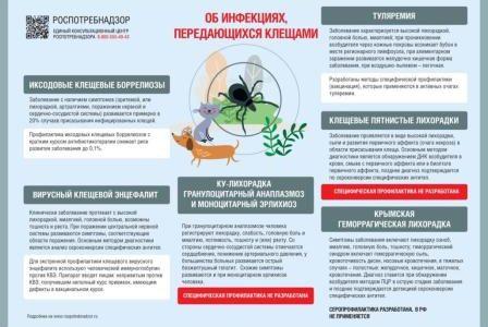 Об инфекциях, передающихся клещами